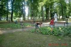 Park historyczny Gubin. Wykonawca firma Leszek Kułak 14