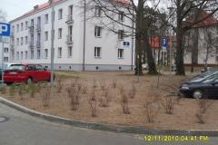 2010. Wędrzyn. Zieleń osiedlowa. Firma Leszek Kułak