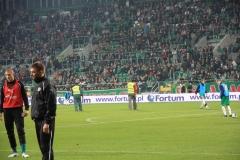 2010 wymiana murawy stadion śląsk wrocław. wykonawca- firma leszek kułak 001