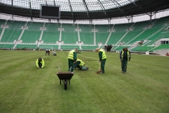 2010 wymiana murawy stadion śląsk wrocław. wykonawca- firma leszek kułak 010