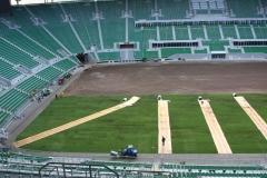 2010 wymiana murawy stadion śląsk wrocław. wykonawca- firma leszek kułak 013