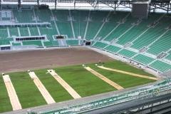 2010 wymiana murawy stadion śląsk wrocław. wykonawca- firma leszek kułak 015