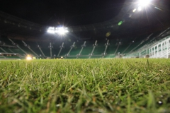 2010 wymiana murawy stadion śląsk wrocław. wykonawca- firma leszek kułak 016