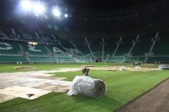 2010 wymiana murawy stadion śląsk wrocław. wykonawca- firma leszek kułak 017