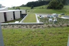 2010 Filharmonia Gorzów Wlkp. Firma Leszek Kułak wykonuje zielone dachy i zagospodarowanie terenu.