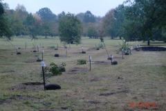 Zakładanie sadu starych odmian drzew owocowych. Firma Leszek Kułak